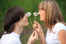 Free Pair With Dandelions In Hands Royalty Free Stock Image - 10355696