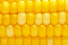 Free Corn Background Royalty Free Stock Images - 10356649