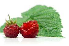 Two Raspberries And Sheet Stock Photos