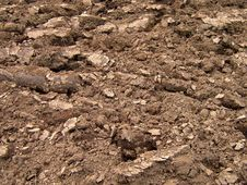 Free Ploughed Field Royalty Free Stock Image - 10359086
