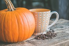 Free Orange Pumpkin Near White Ceramic Mug With Seeds Stock Image - 103510601