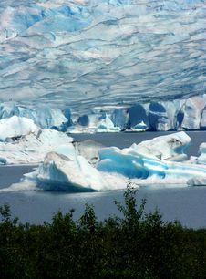 Free Mendenhall Glacier, Alaska Royalty Free Stock Images - 10361069