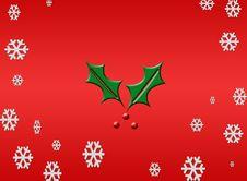 Free Christmas Holly Stock Photo - 10361570