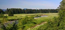 Free Spasski River Valley, Alaska Royalty Free Stock Photography - 10361757