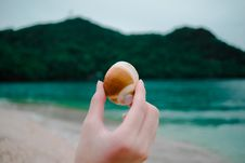 Free Beach, Blur, Cliff, Close-up Stock Images - 103898894
