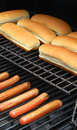 Free Hot Dog Sausages On Barbecue Stock Image - 10390441