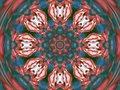 Free Red And Blue Pinwheel Stock Photo - 1040900