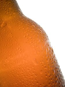 Free Cold Beer Stock Image - 1040641