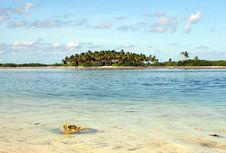 Free A Maldives Island Royalty Free Stock Photography - 1040737