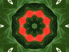 Free Red And Green Pinwheel Royalty Free Stock Photo - 1040865