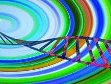 DNA 31 Stock Photos