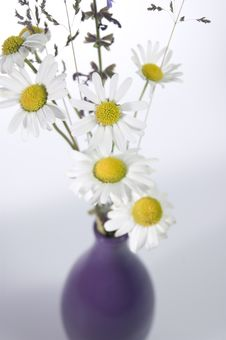 Free Bouquet In A Vase Royalty Free Stock Photography - 1041727