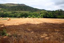 Free Hay Field Stock Images - 1042094