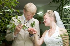 Free Married. Stock Photography - 1042842
