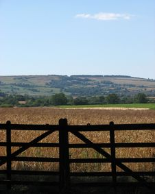 Free Yorkshire Countryside Stock Image - 1046741