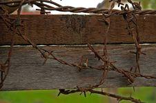 Free Barbwire Stock Photos - 1048133