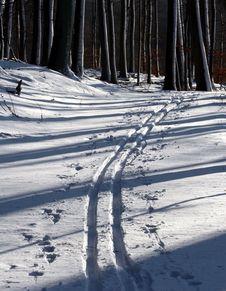 Free Winter Path Stock Image - 1049971