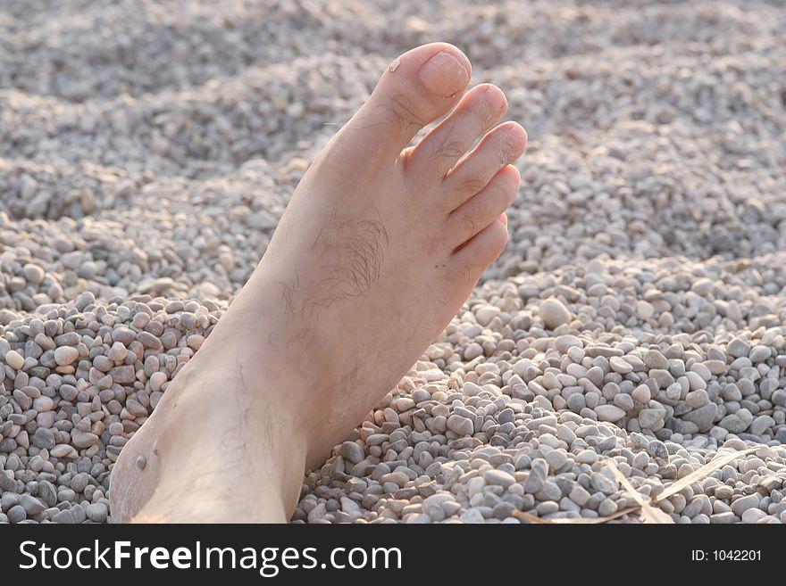 Vocationer foot