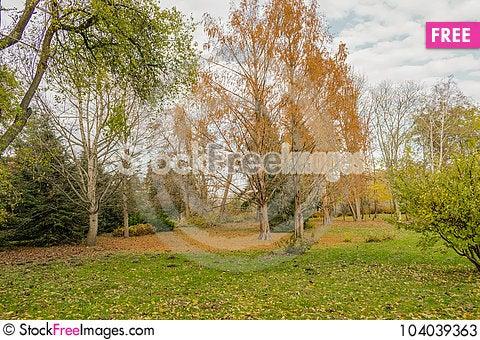 Free End Of The Golden Autumn Stock Photos - 104039363