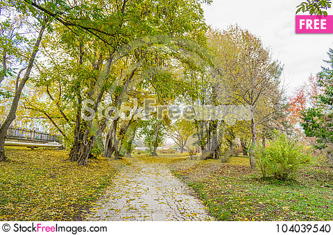 Free End Of The Golden Autumn Stock Photo - 104039540