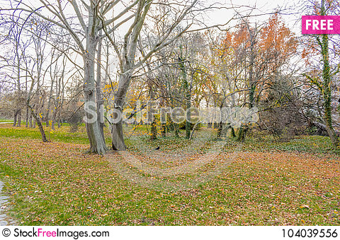 Free End Of The Golden Autumn Royalty Free Stock Image - 104039556