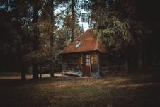 Free Wooden House On A Forest Royalty Free Stock Photos - 104366778