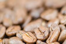 Free Brown Coffee Beans Stock Photo - 104366830