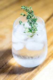 Free Green Leafed Plant On Drinking Glass With Ice And Water Royalty Free Stock Images - 104635749