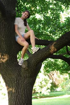 Free Girl Sitting On The Oak Stock Image - 10483281