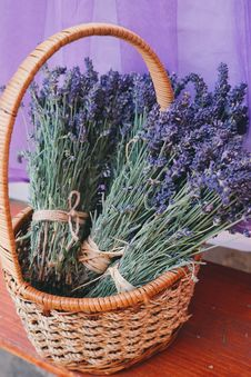 Free Aroma, Basket, Beautiful, Flowers, Royalty Free Stock Images - 104806569