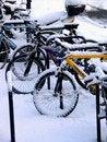Free Bikes Snow 2 Royalty Free Stock Photography - 1051367