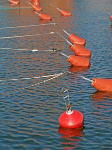 Free Yacht Fixing Buoys Stock Image - 1051151