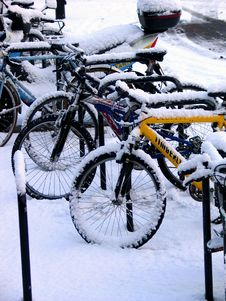 Free Bikes Snow 2 Royalty Free Stock Photography - 1051367