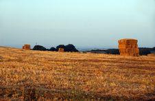 Free Hay Bales Royalty Free Stock Photo - 1051575