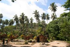 Small Village On  South Pacific Island Stock Images
