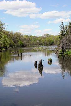 Free Springtime Creek Stock Photography - 1052672