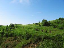 Free Hiking_3 Stock Photography - 1053062