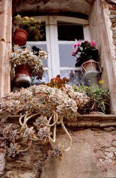 Free Window Dressing Royalty Free Stock Image - 1054946