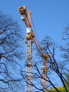 Construction Cranes And Trees Royalty Free Stock Photos