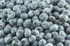 Free Blueberries Royalty Free Stock Photo - 1058085