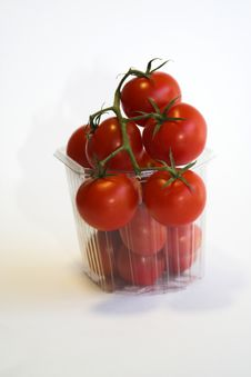 Free Tomatos Royalty Free Stock Image - 1059656