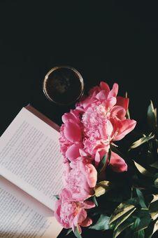 Free Black, Coffee, Bloom, Blooming, Royalty Free Stock Photo - 105034135