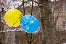 Free Blue And Yellow Balloon Royalty Free Stock Images - 105149789