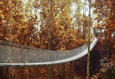 Free Bridge Going To Forest Stock Photo - 105662170