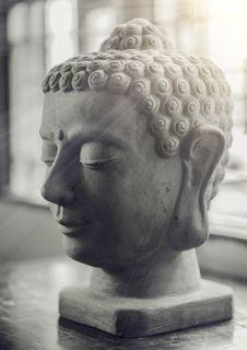 Free Selective Focus Of Gautama Buddha Bust Royalty Free Stock Photos - 105823728