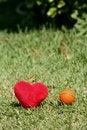 Free I Love Basktet Stock Image - 1067961