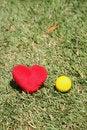 Free I Love Tennis Stock Photo - 1068280