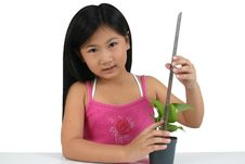 Young Asian Child 008 Stock Photo
