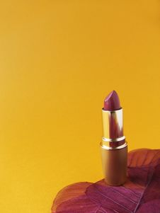 Free Lipstick 1 Royalty Free Stock Photography - 1062337