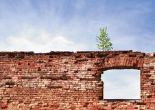 Free Window In A Wall-2 Stock Image - 1064141